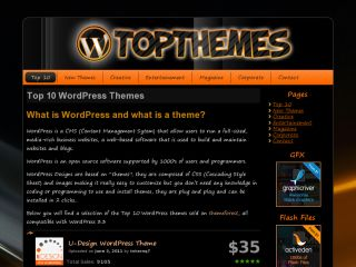 Wordpress Top Themes