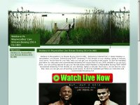 Maidana Vs Mayweather Live Stream Boxing 2014 On H