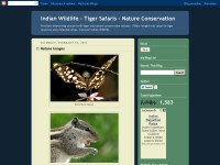 Wildlife blog of India