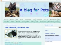 A blog for Pets