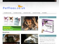 Cats and Dogs Flea Treatment