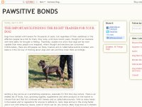 Pawsitive Bonds