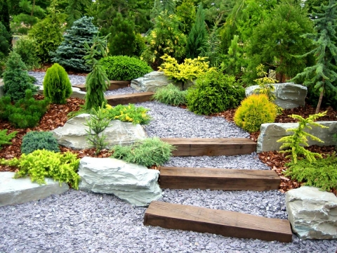 How to landscape on a small budget
