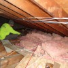 Importance of home insulation removal