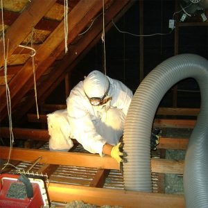 Importance of home insulation removal_1