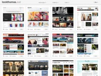 Beautiful Premium WordPress Themes