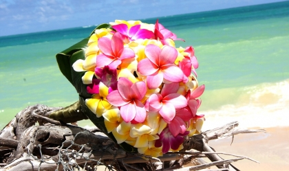 Tropical Wedding Bouquets